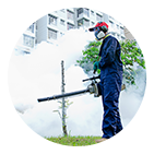 Entretien, nettoyage et aménagements d'espaces verts